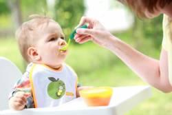 bebekte sindirim sistemi