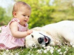 Bebekler Hayatın Görünen Mucizesi