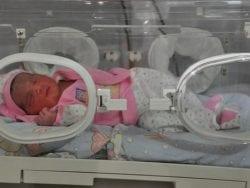 Prematüre Bebek Gelişimi Hakkında