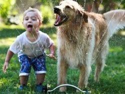 Çocukla Beraber Hayvan Büyütmek